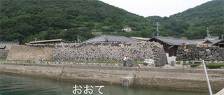 hashimoto3.jpg